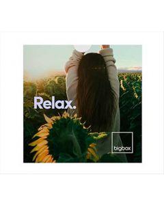 Big Box - Relax