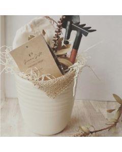 Kit de cultivo en maceta de cerámica