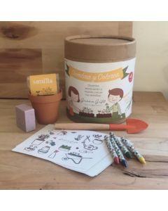 Kit Infantil Siembra y Colorea. Envío Incluido