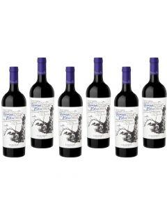 Caja x6-Primeras Viñas Malbec - Luján de Cuyo