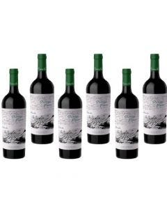 Caja x6-Primeras Viñas Malbec - Gualtallary